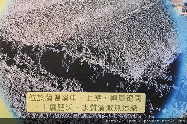 1001028-宜蘭縣三星鄉-青蔥文化館- (44).JPG