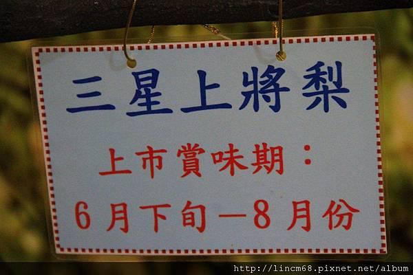 1001102-宜蘭縣三星鄉-青蔥文化館- (4).JPG