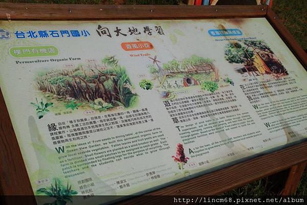 1001024-新北市石門區-石門國小- (33).JPG