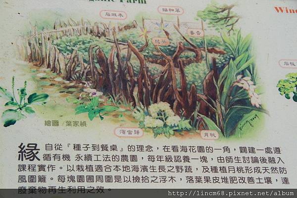 1001024-新北市石門區-石門國小- (34).JPG