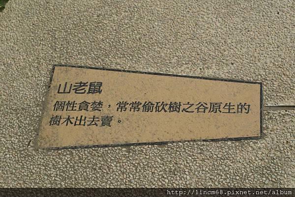 990414-老壺廣場南科樹谷科技園區-環境藝術 (11).JPG
