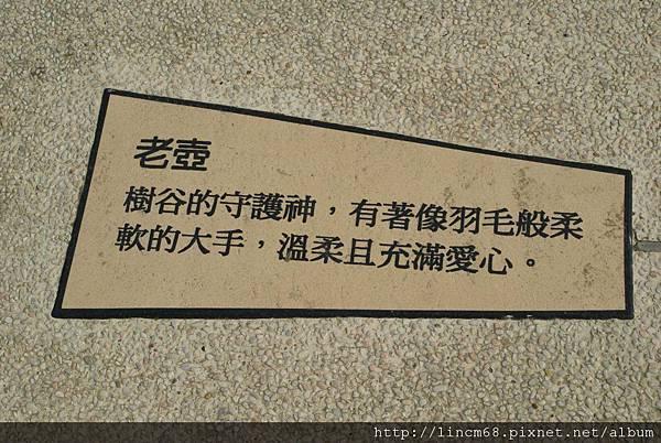 990414-老壺廣場南科樹谷科技園區-環境藝術 (20).JPG