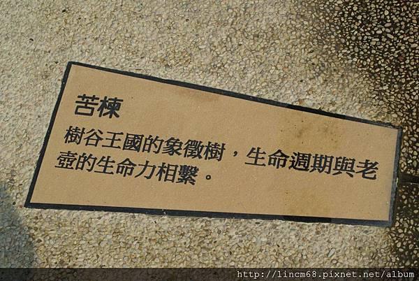 990414-老壺廣場南科樹谷科技園區-環境藝術 (23).JPG