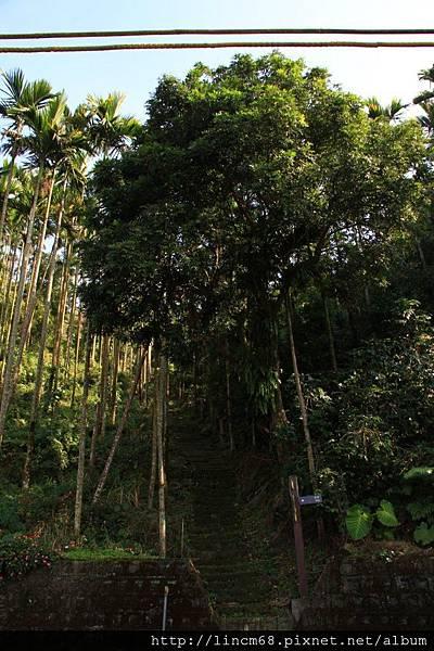 1010110-嘉義梅山-太平村聚落- 230.JPG