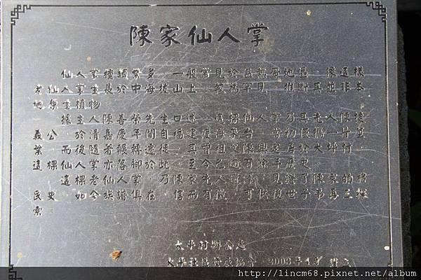 1010110-嘉義梅山-太平村聚落- 259.JPG