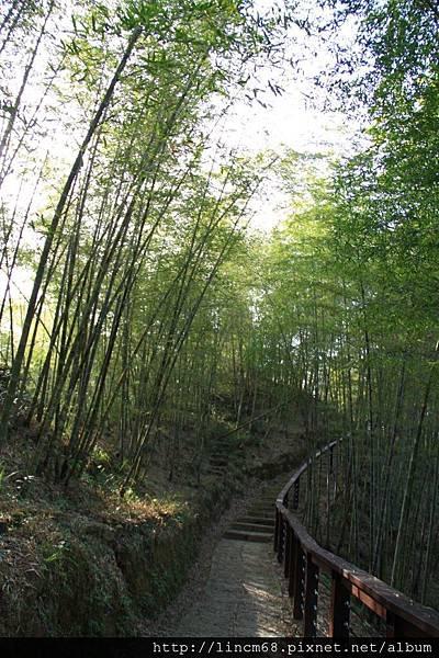 1010110-嘉義梅山-太平村聚落- 300.JPG