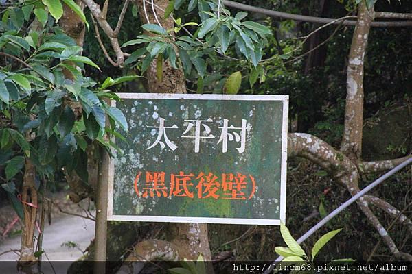 1010110-嘉義梅山-太平村聚落- 312.JPG