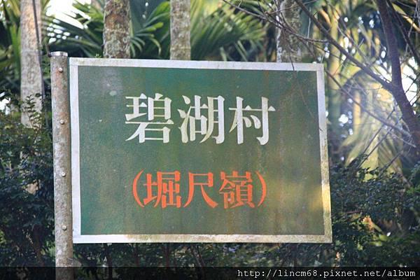 1010110-嘉義梅山-碧湖村聚落- (5).JPG