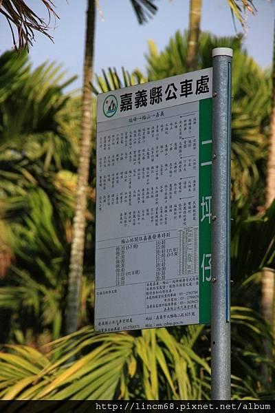 1010110-嘉義梅山-36彎- (22).JPG