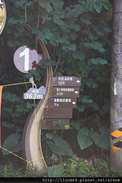 1010110-嘉義梅山-36彎- (42).JPG