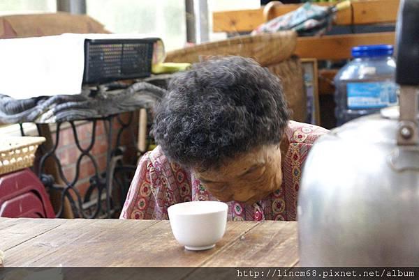 990812-南投魚池-大雁村-森林紅茶- (26)