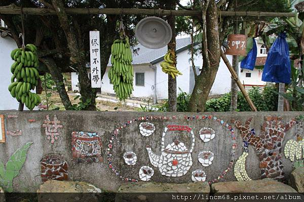990812-南投魚池-大雁村-森林紅茶- 004