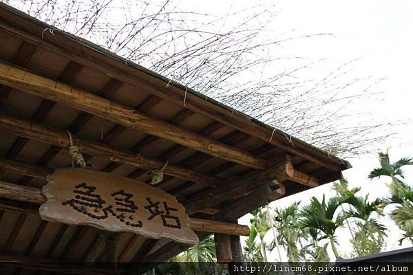 990812-南投魚池-大雁村-森林紅茶- 070