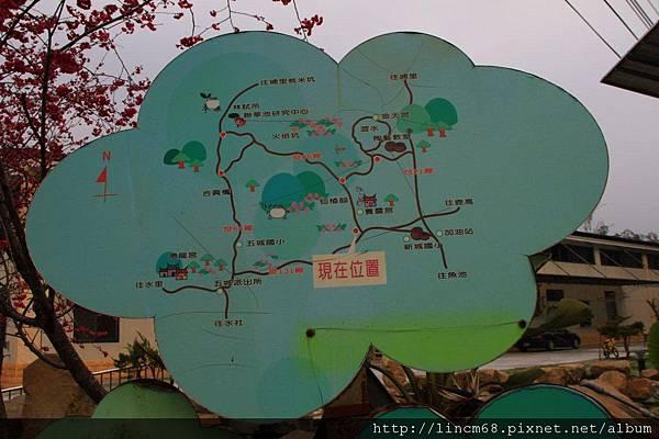 1010215-南投縣魚池鄉-大雁村- (3)