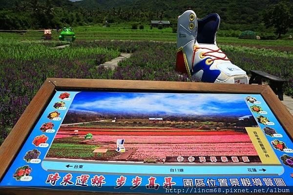 1020728-台東-成功農會-步步高昇景觀區- (1).JPG