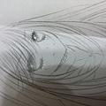 2011_09270157.JPG