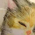 貓咪水彩 (2)