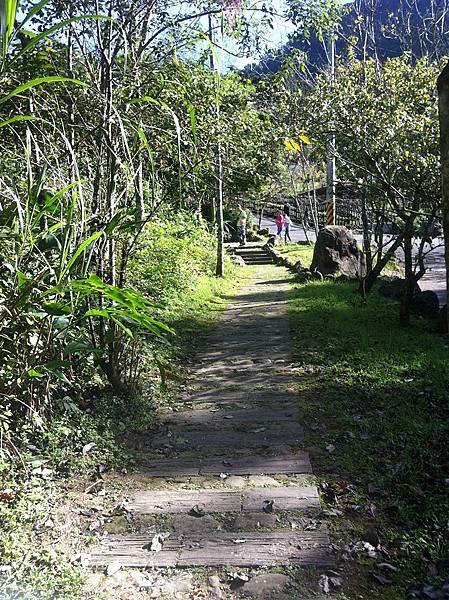 阿里山迷糊步道