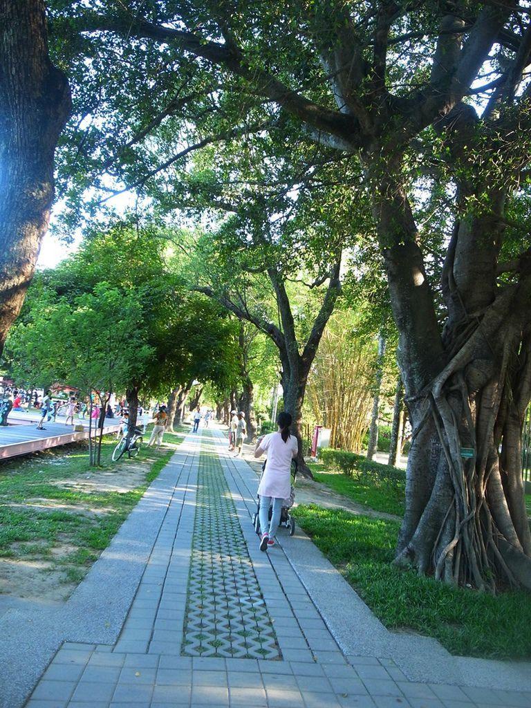 台南旅遊-蕭壠文化園區(親子旅遊)