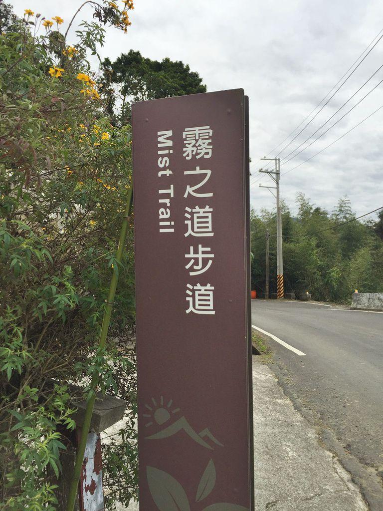 阿里山賞櫻