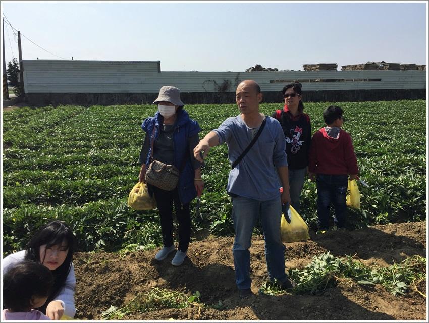 台南旅遊-挖地瓜體驗 瓜瓜園地瓜生態故事館