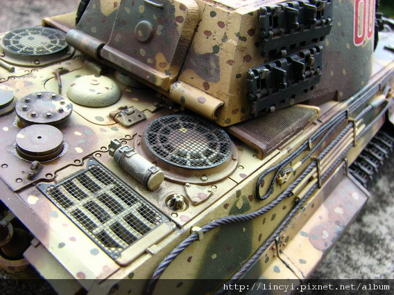 KIng Tiger 2010 No (22).jpg