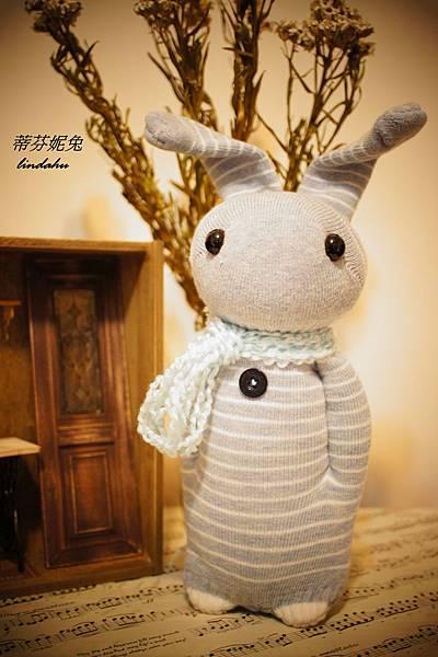 條紋兔蒂芬妮兔