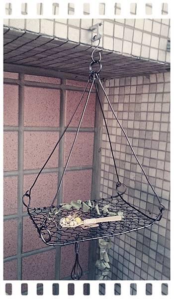 龜甲吊籃(柚子老師鋁線課)