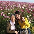 97.12.14-2008南投花卉嘉年華 007