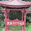 990717大雪山森林遊樂區.情人木橋.五福臨門神木 017
