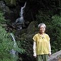 990717大雪山森林遊樂區.情人木橋.五福臨門神木 003