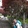 990805,06宜蘭太平山,龜山島,蘭陽博物館 008