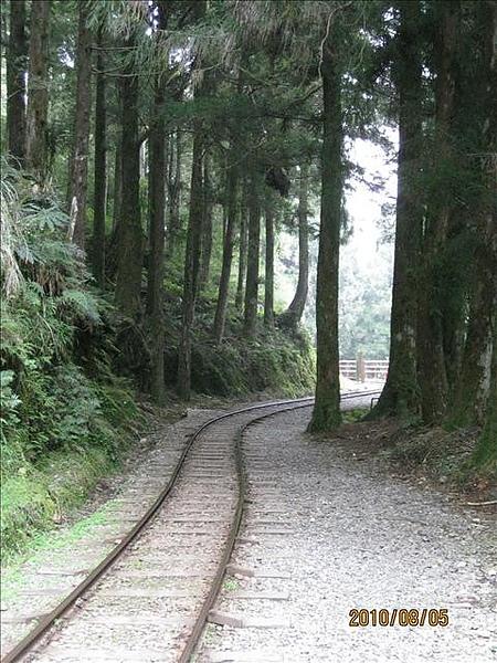 990805,06宜蘭太平山,龜山島,蘭陽博物館 024