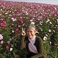 97.12.14-2008南投花卉嘉年華 005