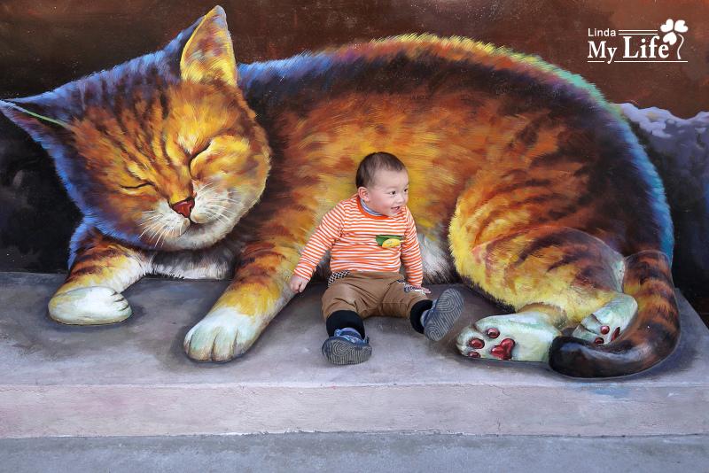 屋頂上的貓-11.jpg