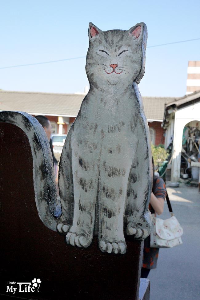 屋頂上的貓-13.jpg