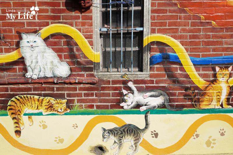屋頂上的貓-19.jpg