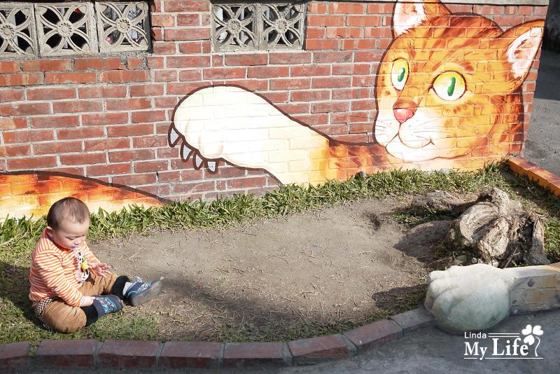 屋頂上的貓-4.jpg