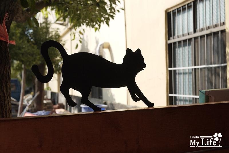 屋頂上的貓-7.jpg