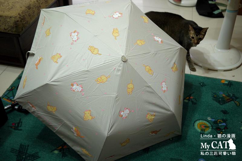 linda貓咪雨傘-11.jpg