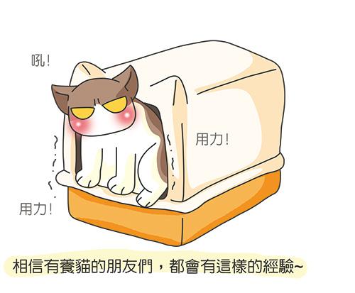 2014-06-30除臭貓碳-2.jpg