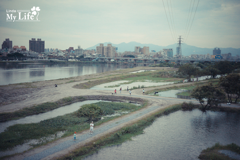 新月橋走走-17.jpg