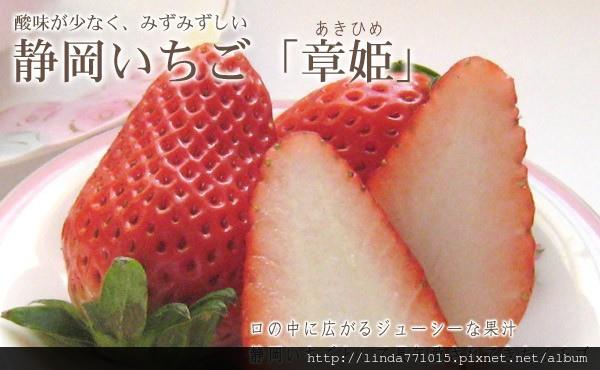 berry-aki-head.jpg