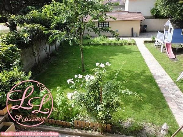 garden 1 拷貝.JPG