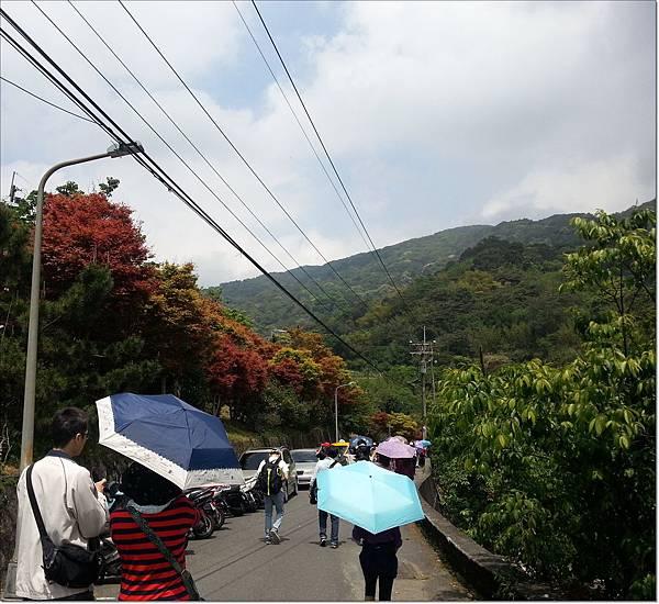 2015/04/04 台北奧萬大02