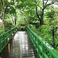 """通網""""井之頭""""公園的路"""