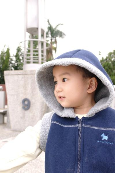 SAM_0470.jpg