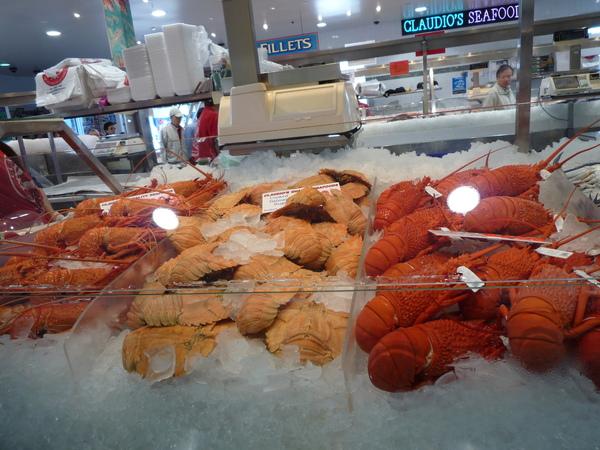 龍蝦.... 吃不起.JPG