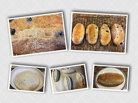 黑橄欖紡錘麵包 11:25:2015.jpg