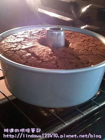 超Q潤巧克力戚風蛋糕-剛出爐